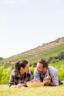 Paare mit dem apfelkorb, der am weinberg sich entspannt