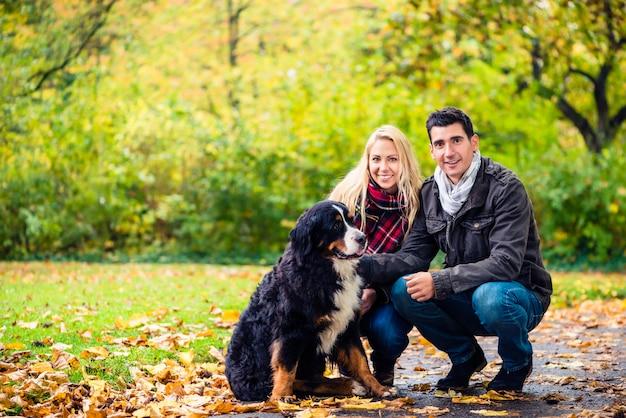 Paare mit dem hund, der herbst in der natur genießt