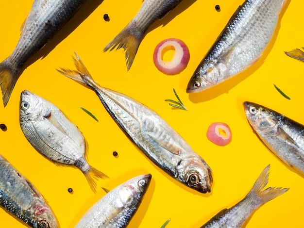 Paare von frischen fischen mit gelbem hintergrund