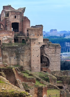 Palast von septimius severus ruinen palatin hügel, rom, italien.