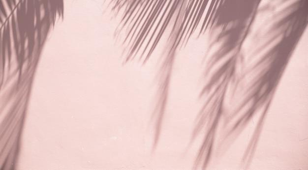 Palm hinterlässt schatten auf einer sandigen wand