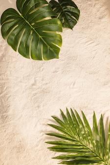Palm und monstera blätter am gelben strand