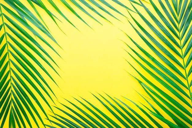 Palmblätter auf pastellfarbenem hintergrund