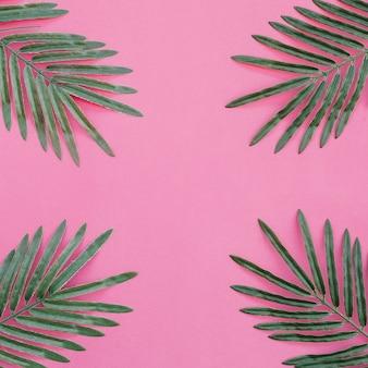 Palmblätter auf rosa hintergrund an den vier ecken