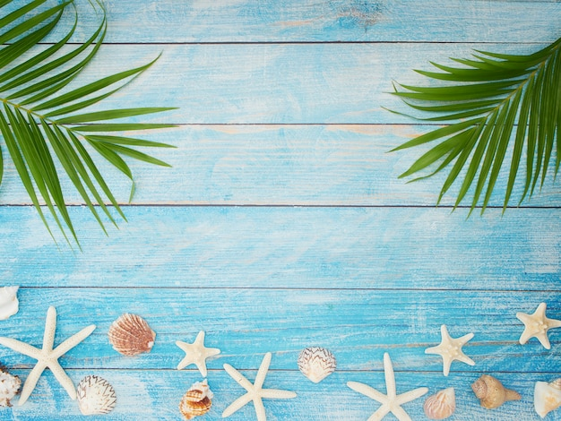 Palmblätter mit muscheln, seesternen.