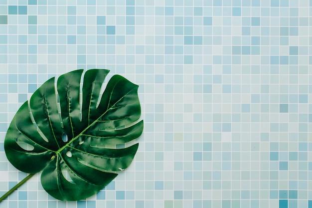 Palmblatt auf einem sommerhintergrund