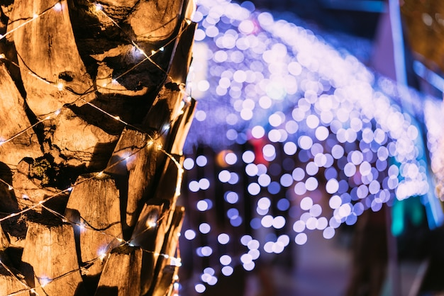 Palme mit bokeh im hintergrund. fest für weihnachten und ein frohes neues jahr.