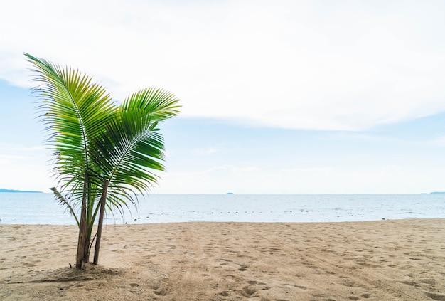 Palme und tropischer strand in pattaya in thailand