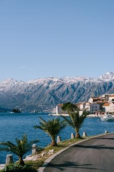 Palmen am damm in der stadt perast montenegro