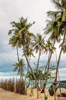 Palmen am strand auf den malediven. dunkler, bewölkter und bedrohlicher himmel.