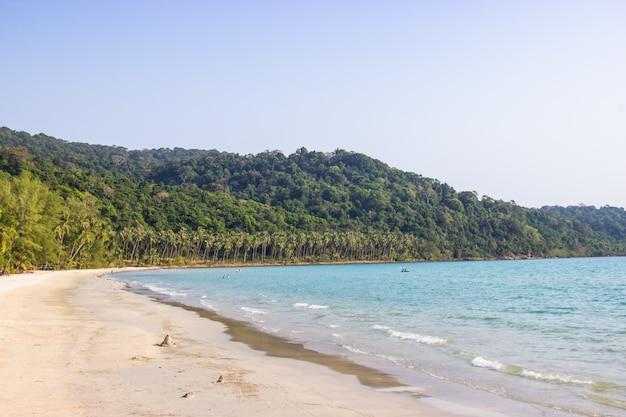 Palmen und der himmel, die auf weißem sand hell sind, setzen an koh kood insel trat, thailand ao phrao-bereich auf den strand.