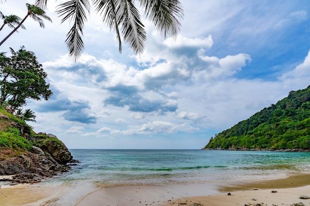 Palmenrahmen in der schönen bucht, landschaftsblick phuket reiseziel