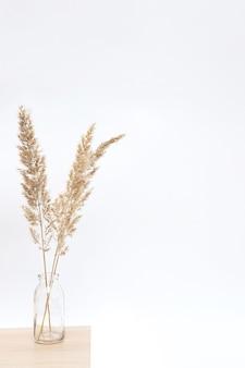 Pampasgras in der glasvase auf holztisch nahe weißer wand