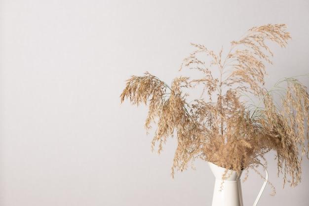 Pampasgraszweig in der vase