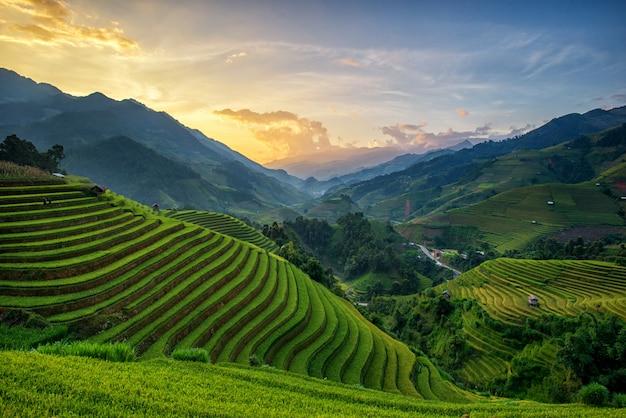 Panorama-reisfelder auf terassenförmig angelegtem im sonnenuntergang bei mu cang chai