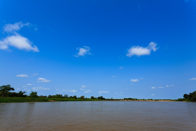 Panorama vom pantanal, brasilianisches feuchtgebiet. befahrbare lagune. wahrzeichen von südamerika