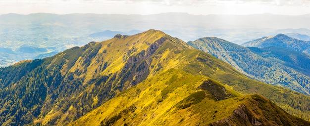 Panorama von karpatenbergen am sonnigen tag des sommers