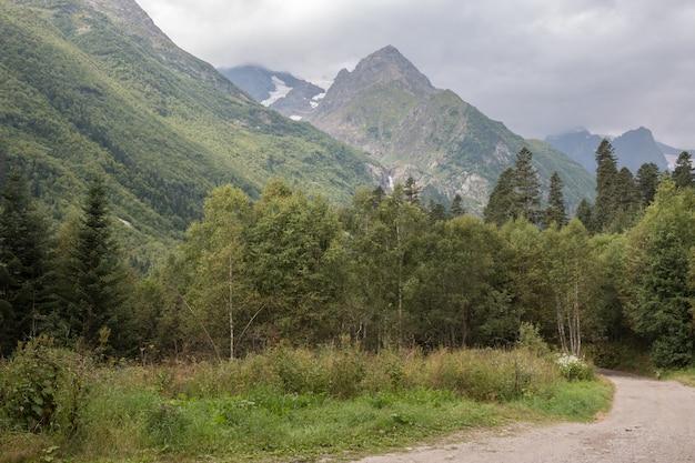 Panoramaansicht der tiefen waldszene im nationalpark von dombay, kaukasus, russland. sommerlandschaft, sonnenscheinwetter und sonniger tag
