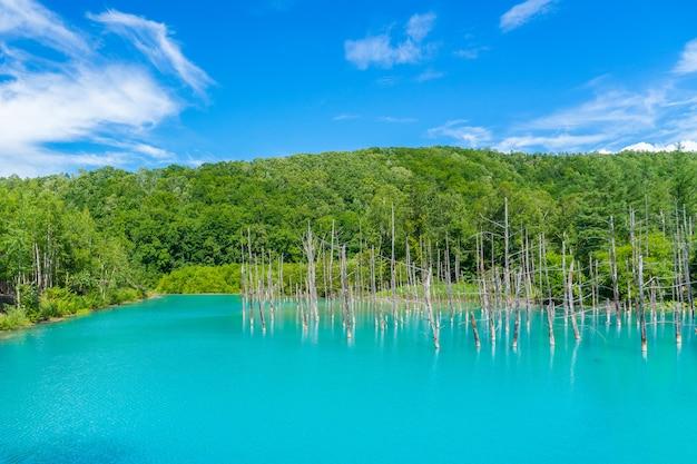 Panoramaansicht von blauem teich in biei, hokkaido, japan.