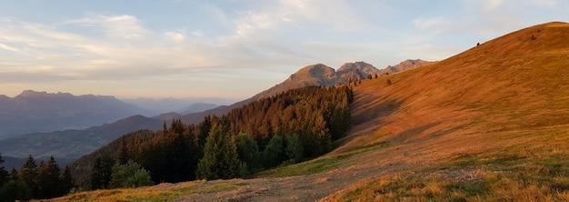 Panoramaaufnahme von orangefarbenen feldern und wäldern während des sonnenuntergangs