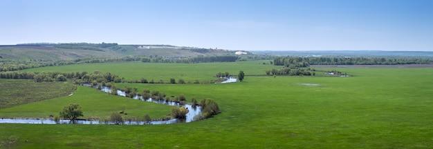 Panoramablick auf das tal des flusses im zentralen teil russlands. draufsicht auf eine frühlingswiese mit gras.
