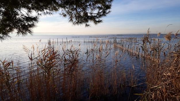Panoramablick auf den albufera-see in valencia, bei sonnenuntergang, mit ruhigem wasser, in der nähe von fischernetzen.