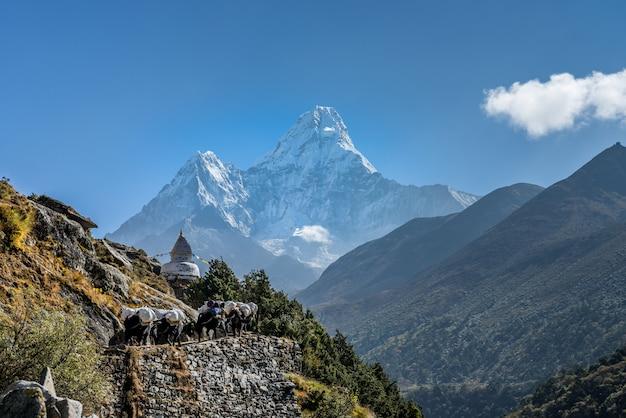 Panoramablick auf den berg ama dablam mit wunderschönem himmel auf dem weg zur everest-basis