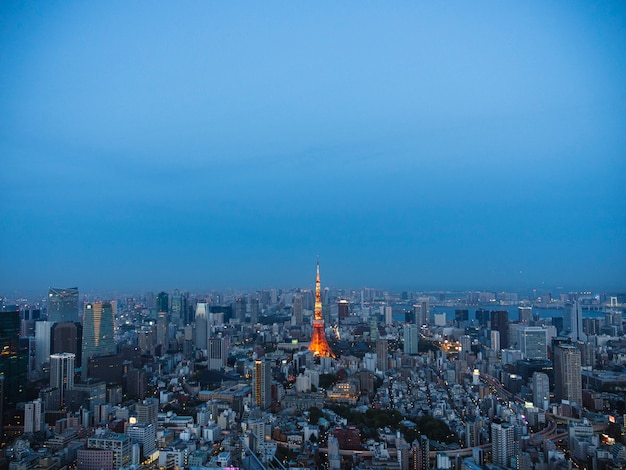 Panoramablick auf den sonnenuntergang der stadt tokio. berühmter tokyo skytree.