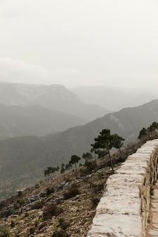 Panoramablick auf die natur