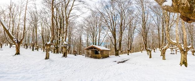 Panoramablick auf die zuflucht neben den bäumen des schneebedeckten naturparks oianleku in der stadt oiartzun, im winter neben penas de aya, gipuzkoa. baskenland