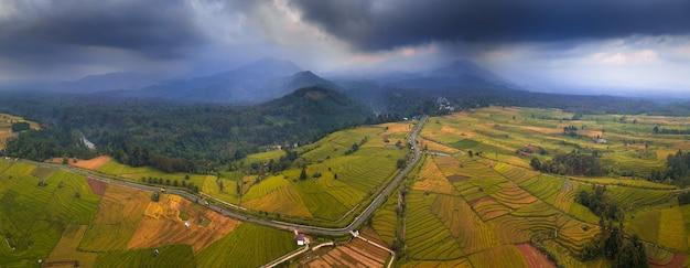 Panoramablick auf reisfelder von schönen und bewölkten sonnenuntergangsluftfotos mit mount bengkulu utara, indonesien