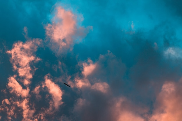 Panoramablick eines rosa und lila himmels bei sonnenuntergang. himmel panorama hintergrund.