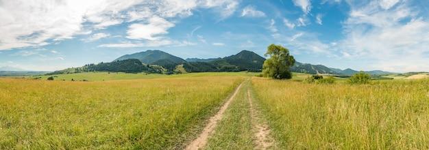 Panoramablick sommervorland landschaft unteren tatra berge urlaub