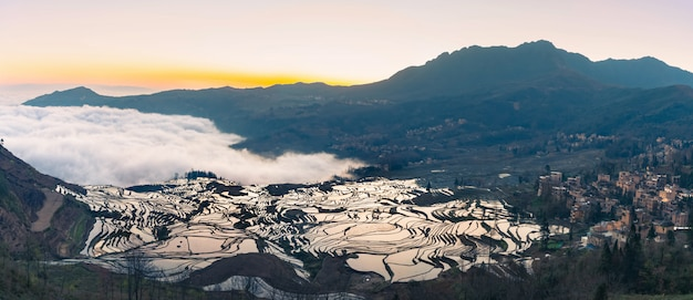 Panoramablick von terassenförmig angelegten reisfeldern von yuanyang, china