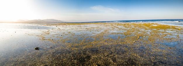 Panoramafoto von korallen und felsen an der ozeanküste. berge und blauer himmel im hintergrund
