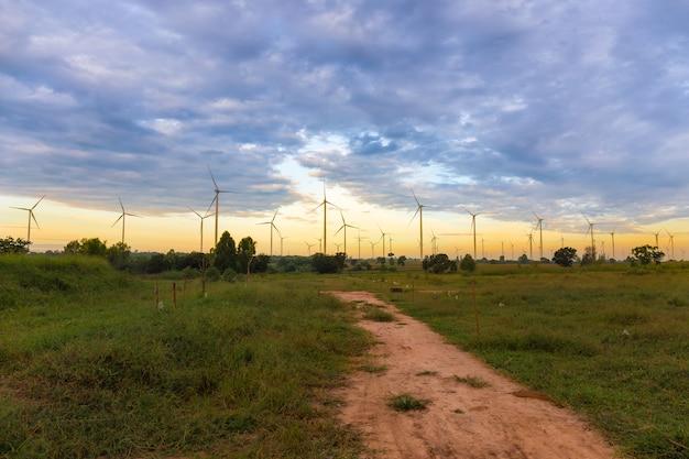 Panoramisch von eco-energie, von windkraftanlage auf dem feld des grünen grases und von mais über sonnenunterganghintergrund