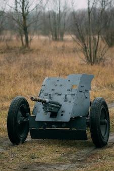 Panzerabwehrkanone in der natur
