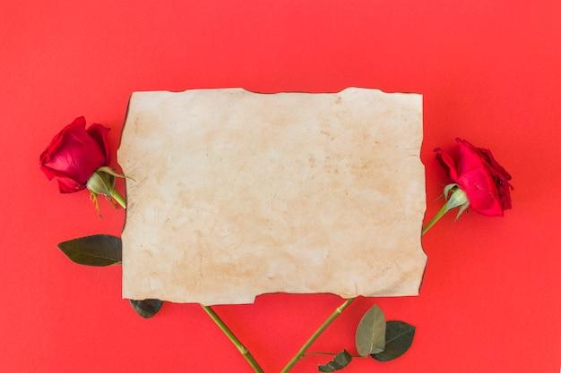 Papier und frische wundervolle rosen