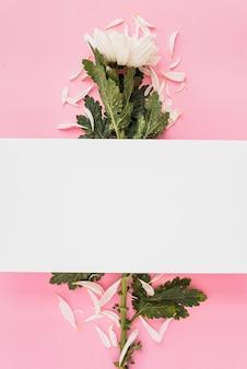 Papierblatt über blume und blütenblätter