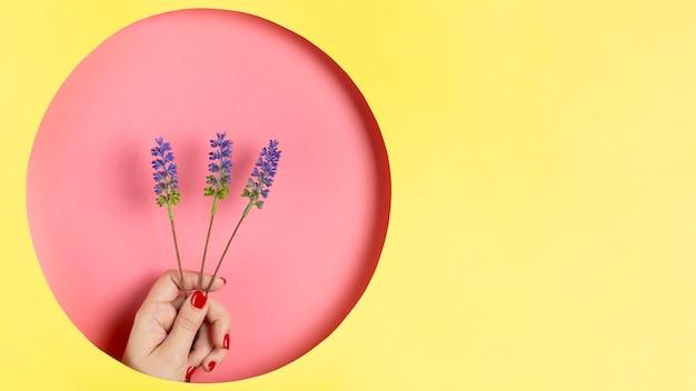 Papierdesign mit der hand, die lavendel hält