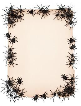 Papierhintergrund mit schwarzer spinne