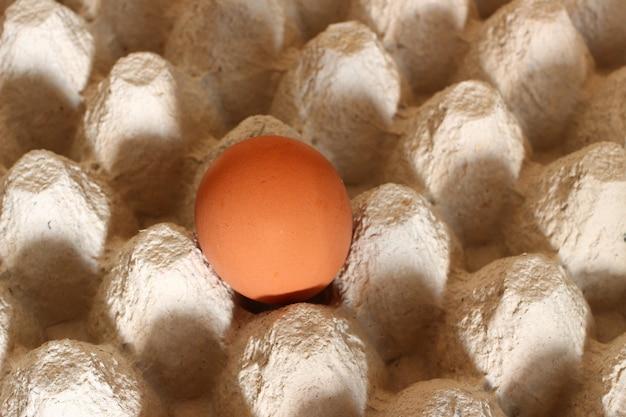 Papierverpackung für eier