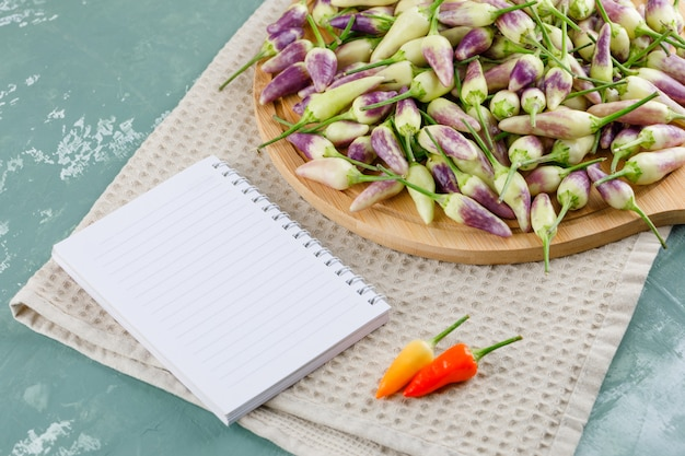 Paprika auf schneidebrett mit notebook high angle view auf gips und küchentuch