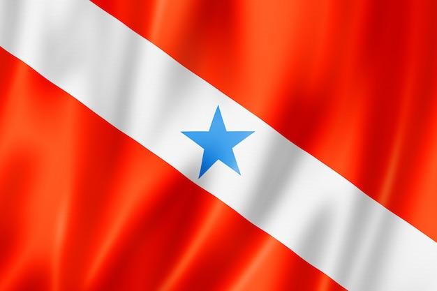 Para staatsflagge, brasilien wehende bannersammlung. 3d-darstellung
