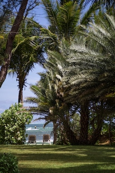 Paradiesischer ort, um einen schönen urlaub zu genießen