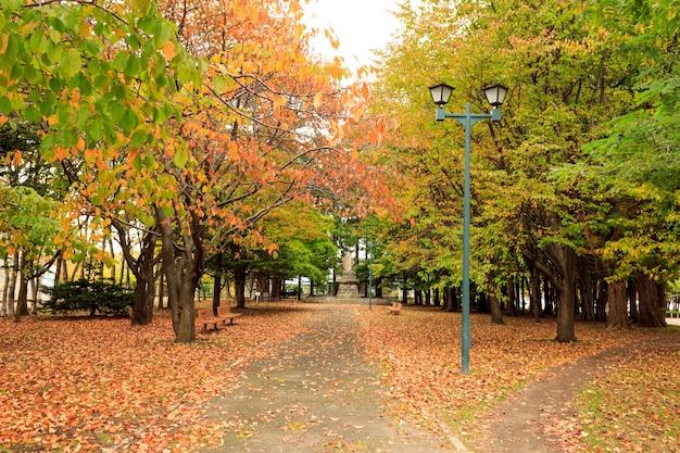 Park auf japanisch