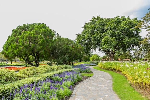 Park mit bäumen und gras