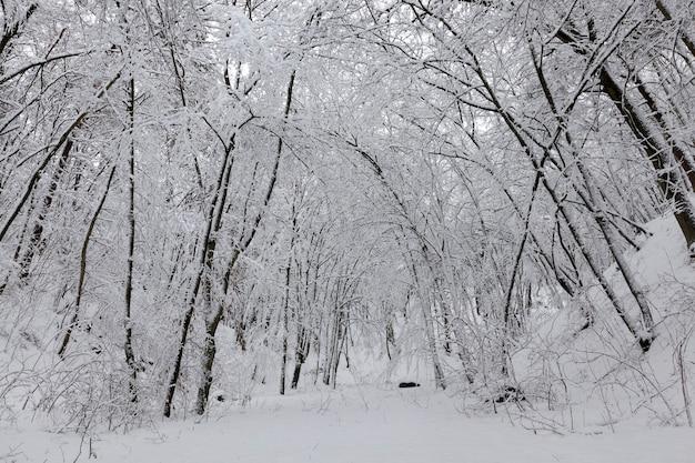 Parken in der wintersaison
