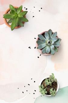 Pastell-aquarell-hintergrund mit zimmerpflanzen-sukkulenten