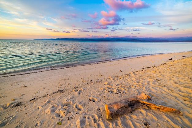 Pastellfarbener himmel, wolken und meerblick in der abenddämmerung. weitwinkelansicht vom sandigen strand mit stammfragment im vordergrund.